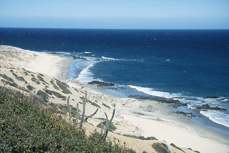 East cape property investment communities in cabo pisces for The cape los cabos